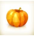 Pumpkin triangulation icon vector image
