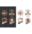 Balls for game of basketball in dark and light vector image