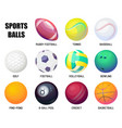 balls for rugby and baseball basketball and vector image
