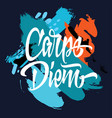 carpe diem printed t-shirt vector image