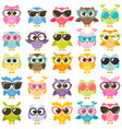 set of colorful owls with glasses isolated on vector image