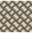 ornate diagonal basket texture vector image vector image