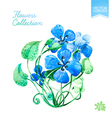 Watercolor blue flowers vector image