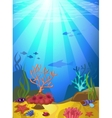 Seabed with corals vector