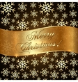 Background with Snowflakes and Greeting Golden vector image