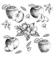 Set of hand drawn apple Vintage sketch style vector image