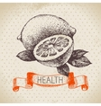 Sketch healthy background with lemon vector image