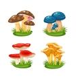 mushrooms in grass vector image