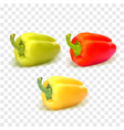 Set of three peppers Yellow red and green pepper vector image