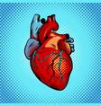 human heart pop art style vector image