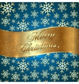 Blue Background with Snowflakes and Greeting vector image