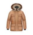 brown winter coat vector image