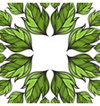 square frame with hand drawn green leaves for vector image