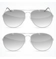 Aviator Sunglasses Set vector image