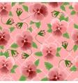 Pink pansies background vector image