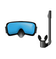 dive mask and snorkel vector image
