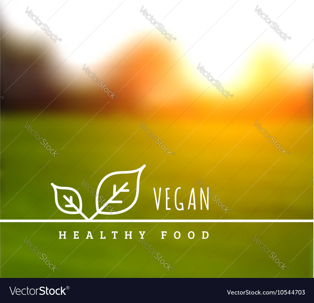 Concept of natural vegetarian health food vector