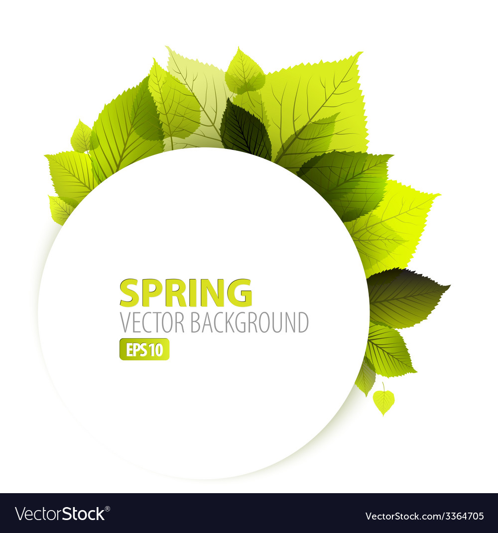 Spring abstract floral background vector