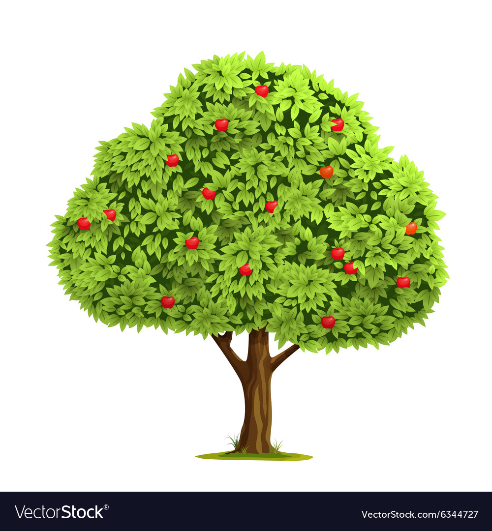 Apple tree with apple vector