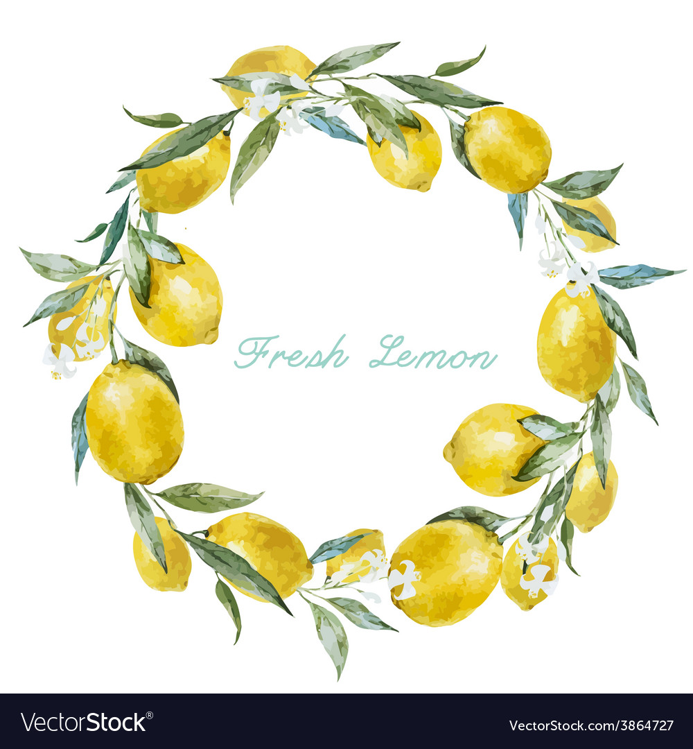 Lemon frame vector