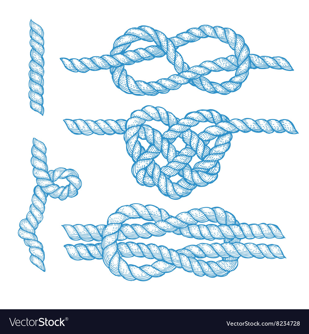 Set of engraved knots and ropes vector