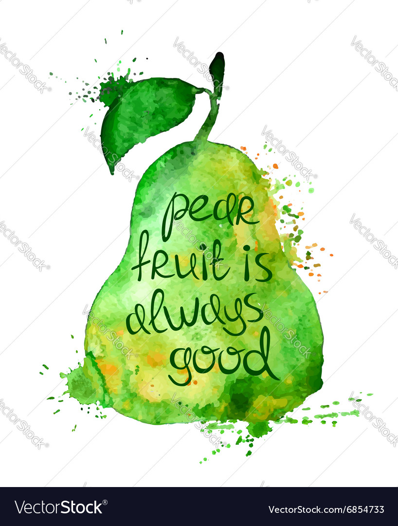 Watercolor of isolated pear fruit vector