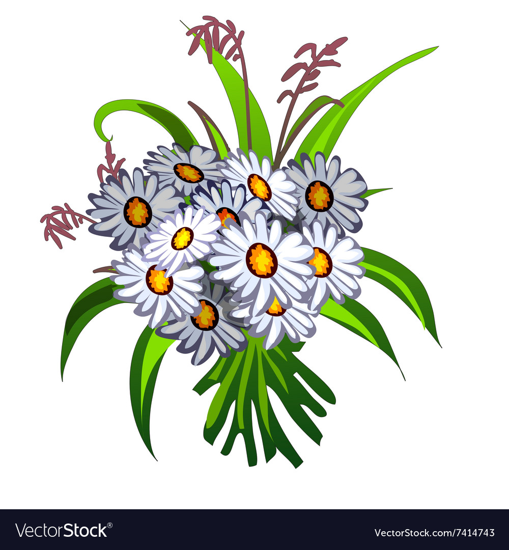 Elegant bouquet of white wildflowers vector
