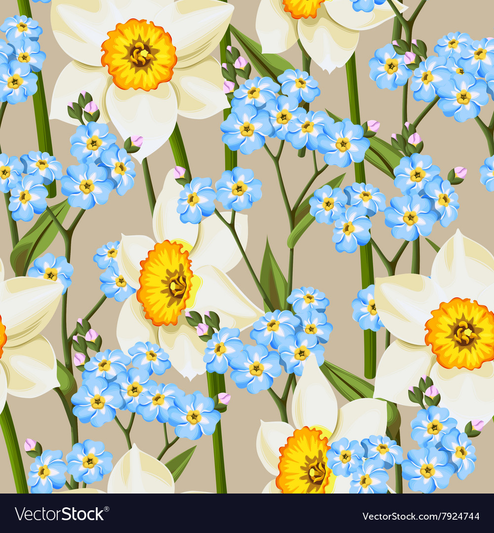 Forget me not and daffodil seamless vector