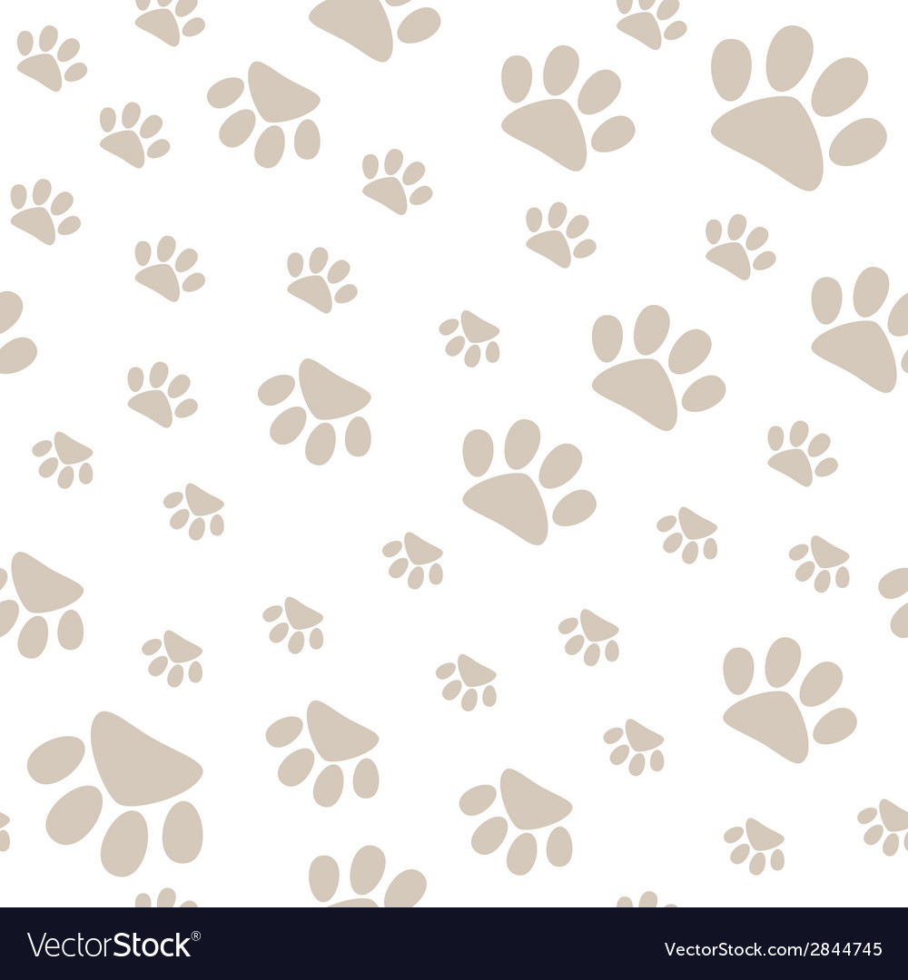 Seamless pattern with pet paws walking in vector