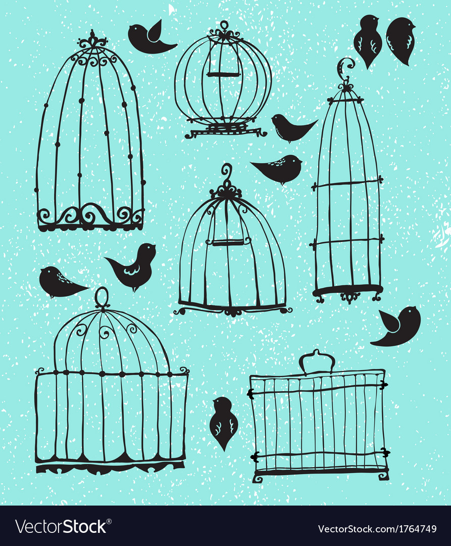Set of doodle cages and little birds vector
