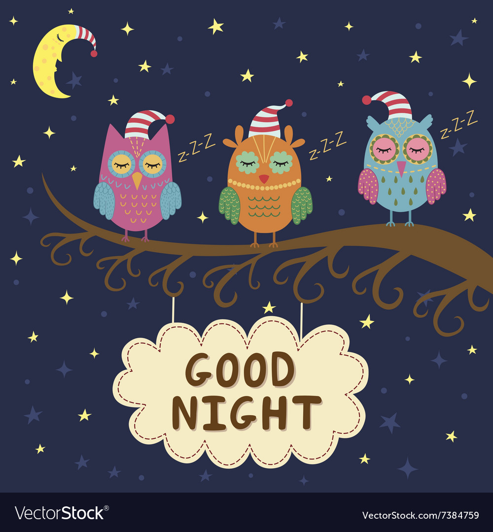 Good night card with cute sleeping owls vector