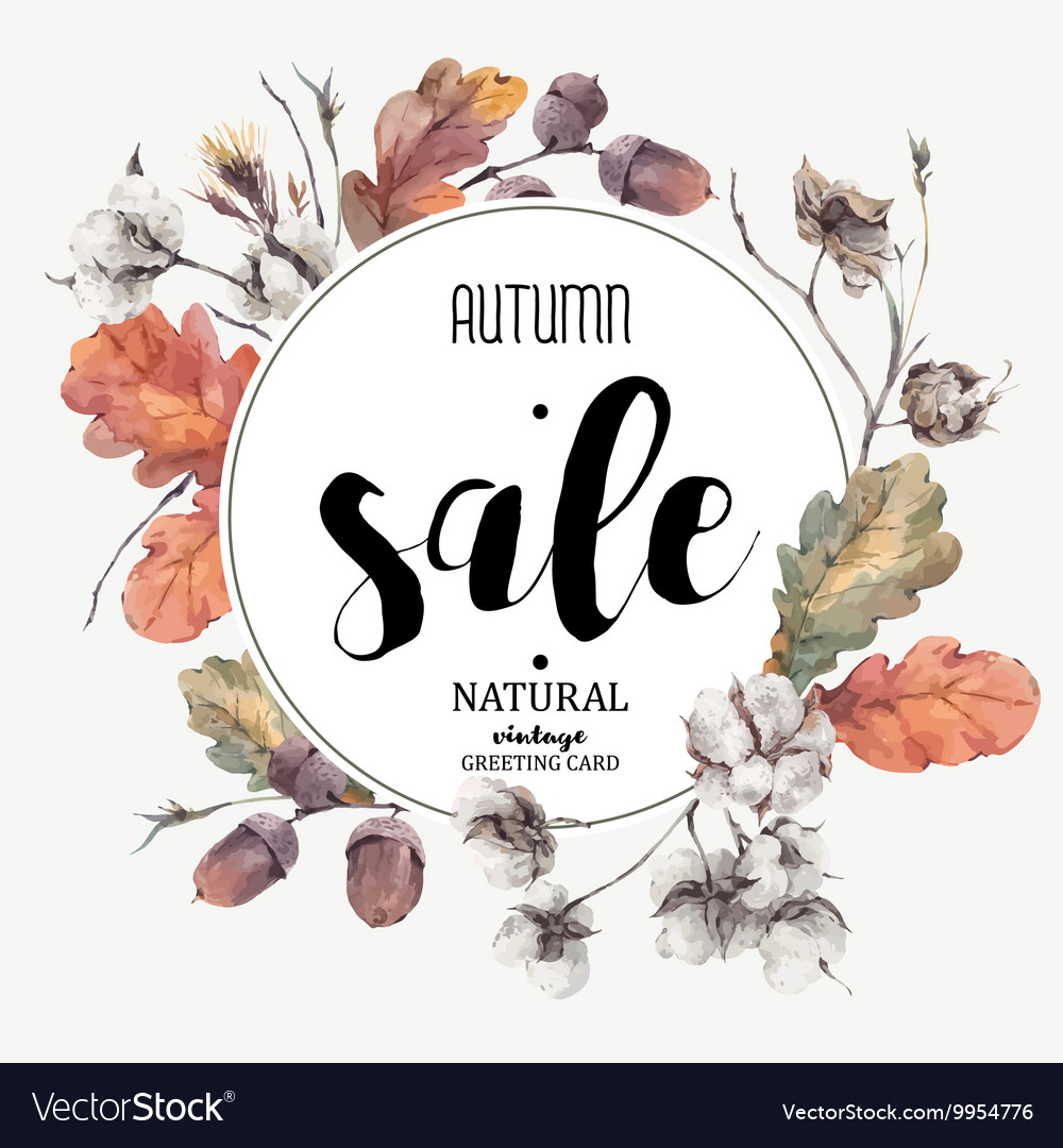 Autumn vintage cotton flower sale card vector