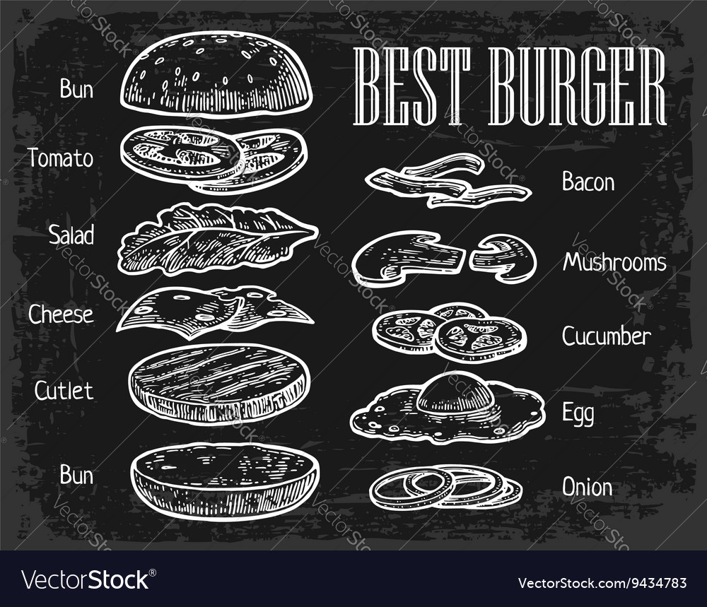 Burger ingredients on chalkboard isolated painted vector