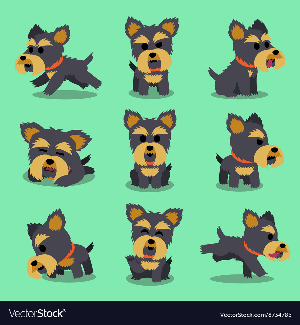 Cartoon character yorkshire terrier dog poses vector
