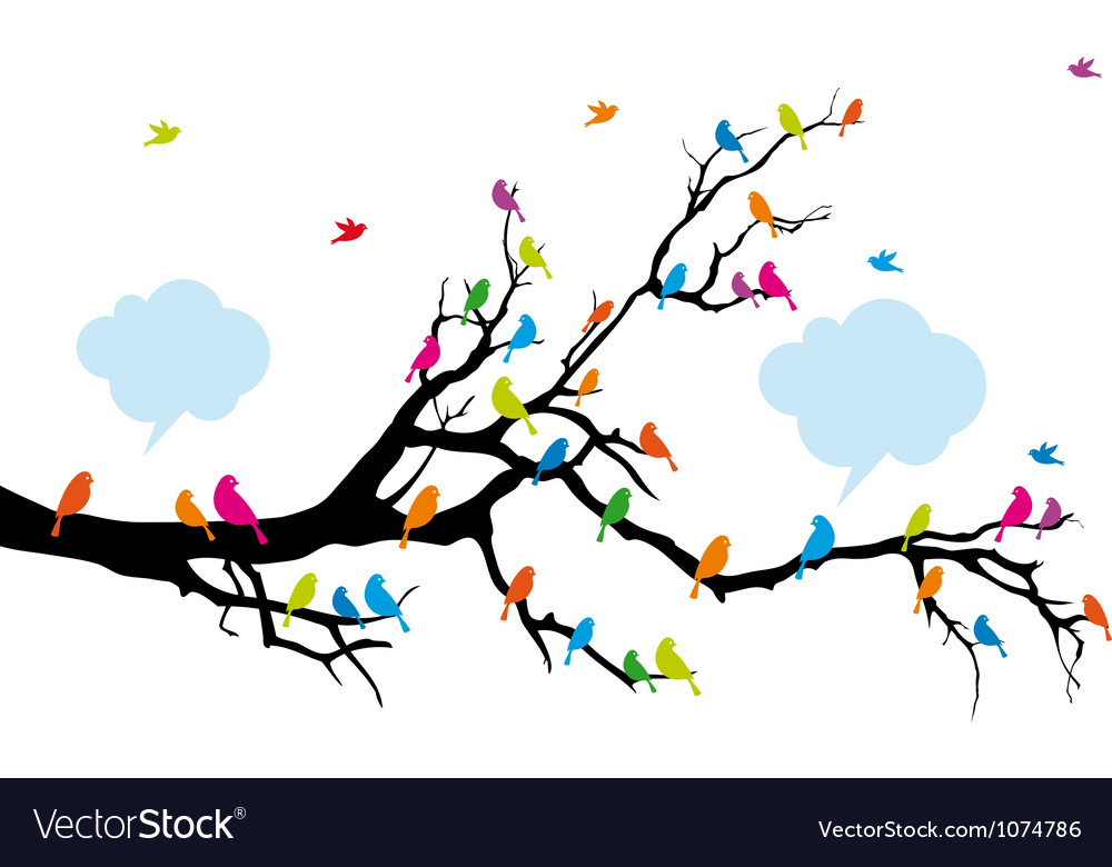 Colorful birds sitting on tree branch vector