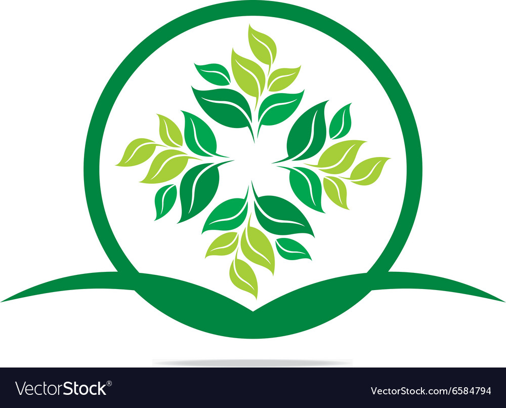 Logo leaves mashed drugs organic product icon vector