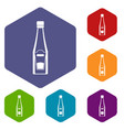 Bottle of ketchup icons set hexagon vector image