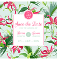 Invitation Congratulation Card - for Wedding vector image vector image