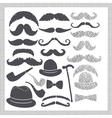 vintage set with mustaches hats and pipes vector image
