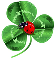St Patrick Day Three Leafed Clover and ladybug vector image vector image