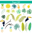 Tropic clipart set vector image vector image