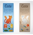 Cat banners vector image
