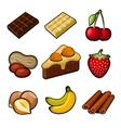 Chocolate icons set vector image