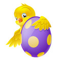 cute chick and painted chocolate easter egg vector image