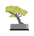 Tree Souvenir Accessoire Money Tree Icon vector image