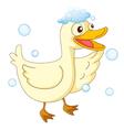 a duck vector image vector image