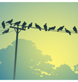 birds on a lines vector image