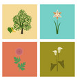 Assembly flat flower calla aster vector image