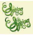 Handlettering spring inscription pattern vector image
