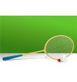 Badminton rocket and shuttlecock vector image
